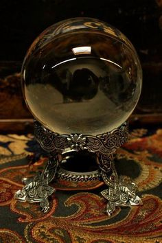 Have a fortune teller tell me my future, by gazing into her crystal ball.