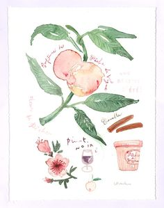 Watercolor fruits  Kitchen art  Peach marmalade by lucileskitchen, $65.00