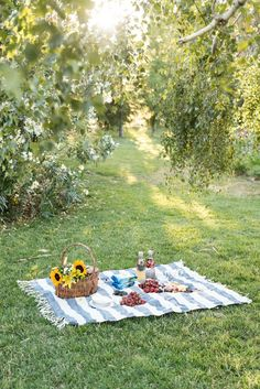 Perfect Picnic Essentials Ideas, Best DIY Picnic Food And Craft Ideas. Perfect Picnic Essentials Ideas, Best DIY Picnic Food And Craft Ideas. Picnic Date, Summer Picnic, Party Summer, Beach Picnic, Fall Picnic, Garden Picnic, Summer Bucket, Spring Summer, Comida Picnic