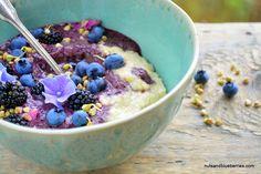 Hirse Porridge mit Blaubeereis (2)