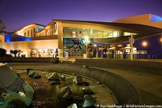 Aquarium of the Pacific, Waterfront Center, Long Beach, California