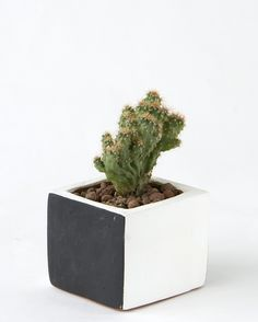 SQUARE POT WHITE / BLACK