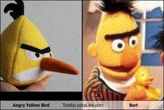 http://totallylookslike.files.wordpress.com/2011/09/angry-yellow-bird-totally-looks-like-bert.jpg