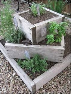 Tiered raised bed herbs -- I would fill the centers of the lower levels with rocks to save compost/dirt when building and filling