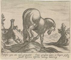 Egbert van Panderen | Landschap met paard, Egbert van Panderen, Antonio Tempesta, Frederik de Wit, c. 1590 - 1637 | Heuvelachtig landschap met een paard op een heuvel, naar rechts gewend, op de rug gezien. Op de achtergrond een aquaduct. In de marge een tweeregelig onderschrift in het Latijn. Prent uit een serie van dertig met paardenrassen.
