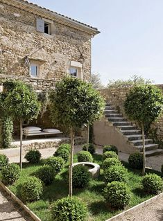 french farmhouse garden. Lawn, clipped box plants and bowl water feature