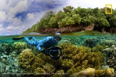Ocean Ecosystem, Marine Ecosystem, National Geographic Photography, Marine Reserves, What The World, Natural World, Ecology, Conservation, Habitats