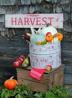 Beautiful Rustic Fall Decorations Fall decor ‪#‎marthastewartcrafts‬ ‪#‎marthastewart‬ ‪#‎plaidcrafts‬