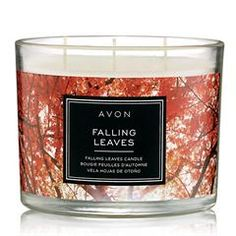 Explore our Scent Shoppe with candles in luxurious fragrances for your home. Relax unwind and escape daily stress with beautifully scented candles and home scents. Fall Candles, 3 Wick Candles, Scented Candles, Candle Jars, Candle Shop, Fall Scents, Home Scents, Essential Oil Diffuser, Hostess Gifts
