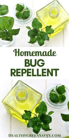 Homemade bug repellent is effective and easy to make. FInd out how to skip the chemicals but still keep bugs at bay! #bugrepellent #homemadegbugspray #nontoxic #camping #hiking #naturalliving Natural Bug Spray, Real Food Recipes, Healthy Recipes, Green Living Tips, Eating Organic, Cleaning Recipes, Grow Your Own Food, Homemade Beauty Products, Natural Living