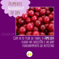 Ameixa contra a prisão de ventre! http://maisequilibrio.com.br/nutricao/frutas-saude-a-mesa-2-1-1-89.html
