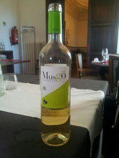 Musgo Vedejo 2012