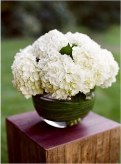 simple hydrangeas. food table, program table etc. specifically look at wrapping around the vase.