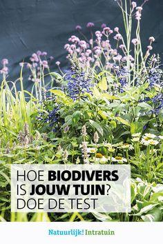 Hoe is de biodiversiteit in jouw tuin? Doe de test en wat jij nog kan bijdragen in jouw tuin! Garden, Plants, Garten, Gardening, Plant, Outdoor, Gardens, Yard, Planting