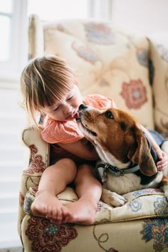 Beagles love little kids- they are like a mother hen }