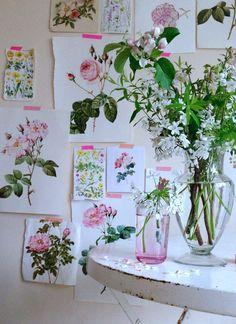 Selina lake botanical prints wall