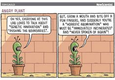 🖊by @tomgauld #science #newscientist #cartoon #LI #geneticengineering