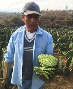 Conoce la labor del chef Jorge Córcega y su #RutaDeLaMilpa