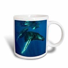 3dRose Humpback whales, Ceramic Mug, 15-ounce
