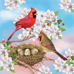 Cardinals in Spring ~ Rosiland Solomon