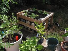 recycled raised beds - Google Search