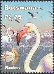 Stamp: Lesser Flamingo (Phoeniconaias minor) (Botswana) (Wetlands Series) Mi:BW 769,Sn:BW 764,Yt:BW 905,WAD:BW 034.02