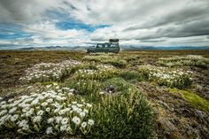 Portrait and Adventure Bespoke Tours Photography Tours, Landscape Photography, New Zealand South Island, Bespoke, Explore, Adventure, Portrait, Places, Holiday