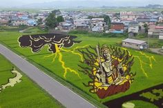 If you've ever taken a tour of Japan's rice fields (as we all have of course) you may have come across the coolest thing since crop circles. The new trend in the land of the rising sun is to use crops of different lengths and color to create intricate patterns and pictures.