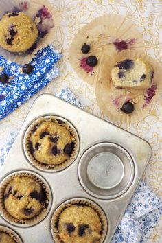 Shredded Coconut Blueberry Paleo Muffins