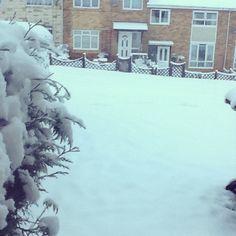 January Snow !!!