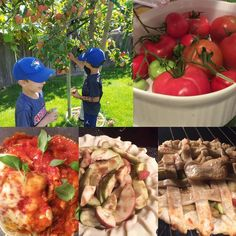 There are few things as awesome as making dinner and baking pies with fruits and veggies from a garden/backyard orchard. Thanks grandpa Gary for all the amazing produce! Chicken parm and apple pie for the WIN!  #chicken #chickenparm #tomatoes #organic #garden #orchard #applepie #pie #apples #okanagan #okanaganfruit #fresh #backyard #homemade #bc #love
