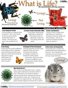 Here's a study guide focused on living/nonliving things and characteristics of life.