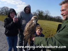 See our photos and video of Eagles Flying, the best bird of prey experience in Ireland including our special tips Irish Customs, Irish Culture, Tourist Information, Eagles, Ireland, Arm, Presents, Spaces, Tips