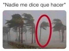 Funny Images, Funny Photos, Haha Funny, Funny Jokes, Funny Spanish Memes, Humor Mexicano, Disney Memes, Yandere, Really Funny