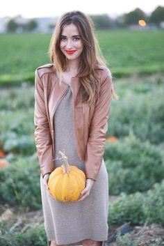 Pumpkin patch pickin