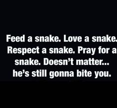 This is true, but do you change and become the snake just because a snake showed they're true colors to you. Or do you still remain the same and not allow one situation to change who you were meant to be. Just refocus and repossess your life back after a snake got the best of you.