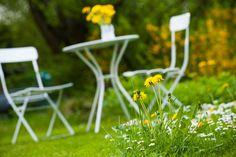 Mietrecht: Garten nur mit Erlaubnis des Vermieters nutzen #homestory #tipps #tricks #advice #home #rent #miete #garden #garten