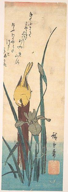 Утагава Хиросигэ | Птица и Iris | Япония | Эдо (1615-1868) | Met