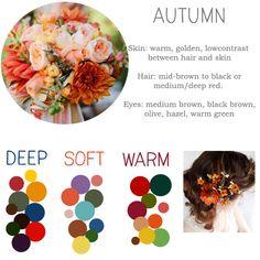Soft Autumn Deep, Dark Autumn, Warm Spring, Soft Summer, Deep Autumn Color Palette, Autumn Colours, Seasonal Color Analysis, Color Me Beautiful, Find Color