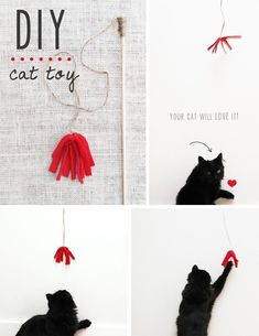 Best toy ever. I used an old t-shirt instead of fleece. Even my cat that hates toys liked this. #Cattoyideas #catsdiyhomemade