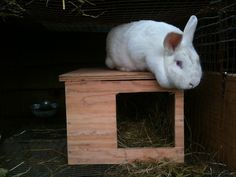 stacking functions - the rabbit hutch & the compost system - farm for life