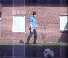poor kitty 可憐的喵喵 – ☆討論區 Forum 歐北貢論壇 – 行動網路電視台