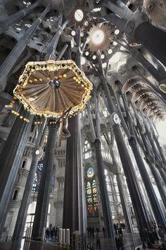 Basílica de la Sagrada Familia, Barcelona Organic Architecture, Architecture Old, Historical Architecture, Beautiful Architecture, Antonio Gaudi, Barcelona Architecture, Cathedral Church, Architectural Elements, Kirchen