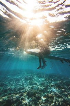 $15 - $145  ·  UNDERWATER SUNSET SURFER PHOTO Fine Art Photography Collection Underwater photo of a surfer on a surf board above a beautiful coral reef with a background of blue sea and a sunburst sunset…More #surferpictures