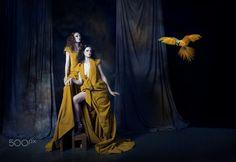 Parrots - CHACHINO Model - Ilana Davies @HAUS Models  MUA - Jacqui Scott Hair - 121 Hair