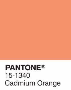 COULEUR DU JOUR : CADMIUM ORANGE par PANTONE La couleur du jour par Pantone est Cadmium Orange, une teinte romantique, désirable et dramatique ! Elle donnera un style affirmé et une vague d'énergie à n'importe quel décor. Inspirez-vous ! #pantone #couleurdujour #orange #decorationdinterieur