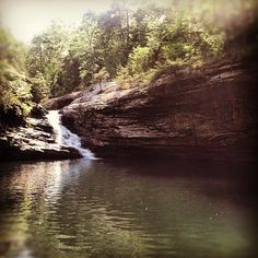Lula Lake one of our favorite hikes around Chattanooga