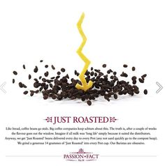 Pret Passion Fact #14 - Just Roasted