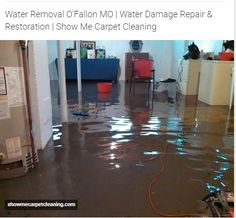 http://showmecarpetcleaning.com/ofallon/services/water-removal/