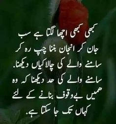 Bt u think. I m an idiot Inspirational Quotes In Urdu, Poetry Quotes In Urdu, Ali Quotes, Wisdom Quotes, Quotations, Qoutes, Status Quotes, Motivational Quotes, Words Hurt Quotes